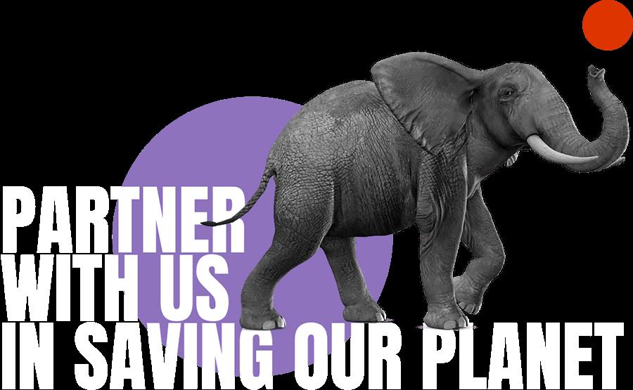 Partner campaign